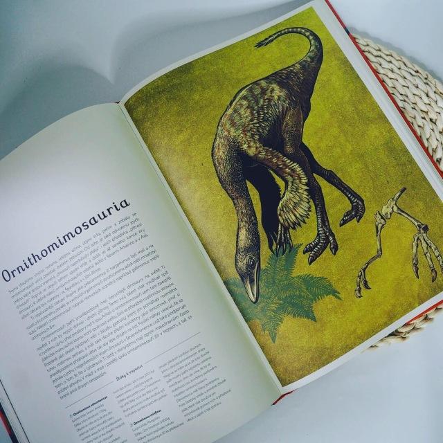 Dinosaurium - rec2.JPG